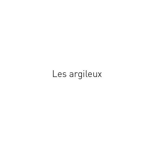 http://georges-pacheco.com/files/gimgs/45_les-argileux.jpg