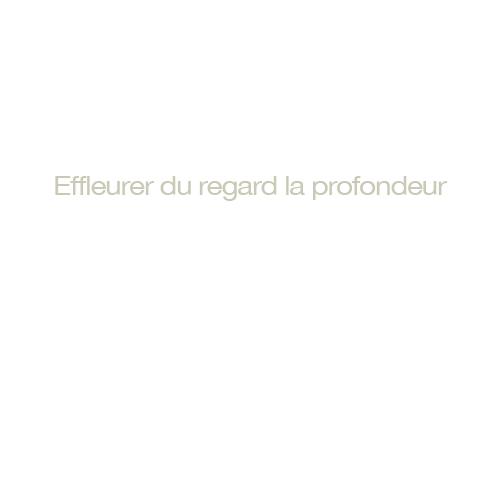 http://georges-pacheco.com/files/gimgs/52_effleurer-du-regard.jpg