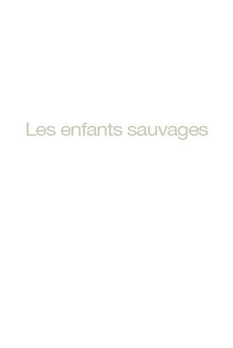 http://georges-pacheco.com/files/gimgs/52_les-enfants-sauvages.jpg